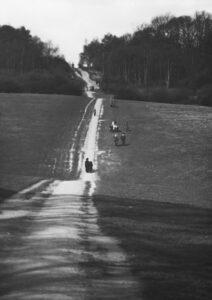 J2-paths-near-Woburn-Buckinghamshire
